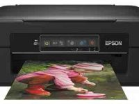Epson-Expression-Home-XP-240-Printer